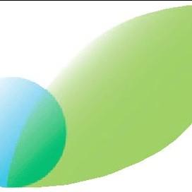 Cashido Corporation profile pic