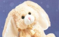 The Best Rabbit