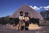 Native Shona