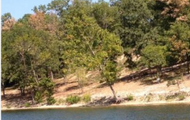 Perfect lot to build a dream home!