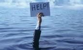 Need Help??