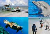 Charter Eco Exploration Cruise