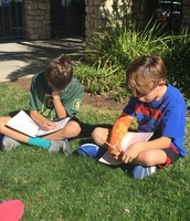 as we craft persuasive writing