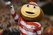 Brutus!!