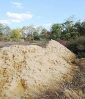 sandhill soil