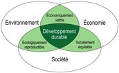 Les principes du développement durable qui s'appliqueront à mon entreprise
