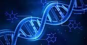 biochemist study