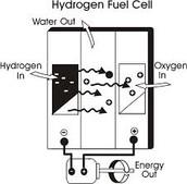 Description of Hydrogen Fuel Cells