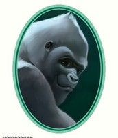 The mighty silverback