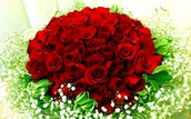 roses are red violets are blue your my mom and i love you