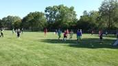 Tchoukball in 8th grade PE