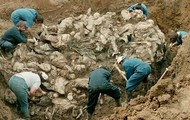 Mass Murder War Crimes