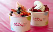 Region 4 Outing to TCBY on 12/11/15