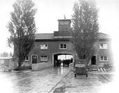 Concentration Camps