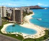 Hawaii bird view