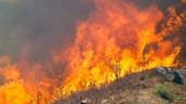 Issues with Wildfires