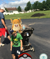 Catching Pokemon