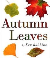 Autumn Leaves by Ken Robbins