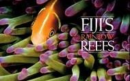 FIJI'S RAINBOW REEFS