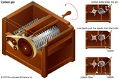 the cotton gin is a small box that get rid of the seed from its cotton