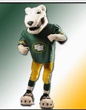 Team Mascot Information