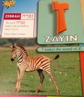 Hebrew Letter of the Day - Zayin