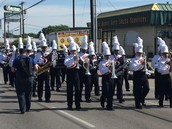 Spruce Band