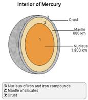 Mercury Structure