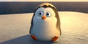 Penguins are my favorite..especially this one