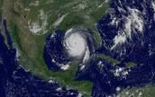 Hurricane Lia