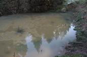 Mill Creek Pond