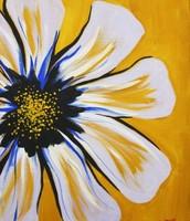 Sunny Day Flower