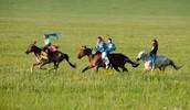 La course de chevaux