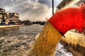 Sewage Pollution
