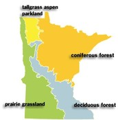 This is 1 out of 4 types of biomes in Minnesota