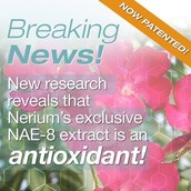First patented anti-aging anti-oxidant on the market.