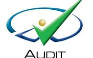 Audit System 2012