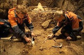 Archaeologist as Detectives
