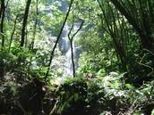 La Tigra el Parque Nacional