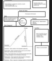 Type 1 Graphic Organizer