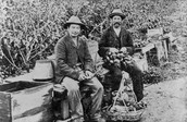 Chinese Fruit and Vegetable Sellers