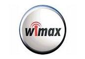 How Wi-MAX works.