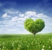 Любов за Земята