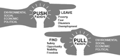 Push & Pull Factors