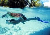Underwater events!