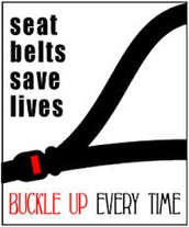 Newtons first law (seatbelt safety)