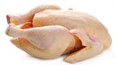 Un Poulet-Chicken