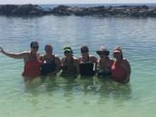 Paradise, poolside!