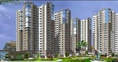 Property In Kolkata Of Different Kinds Situated At Rajarhat