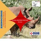 Rhinoceros per la tua Azienda
